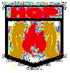 Chính sách hoạt động của công ty Hoàng Quân Phát